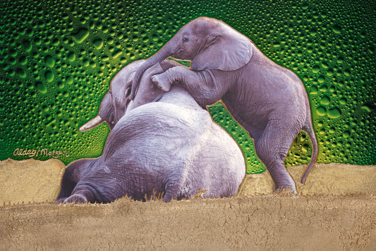 He's Not Heavy (Elephants) 20x30