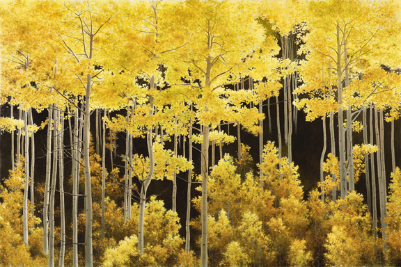Aspen Light AP Embellished 2010