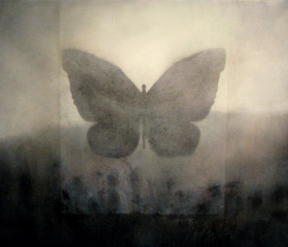 Butterfly - Florescenses (b-2) 2012