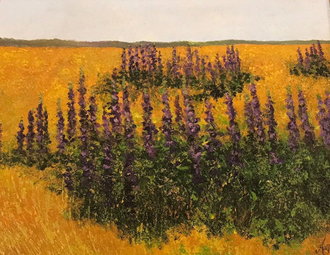 Lupines 2002 18x15