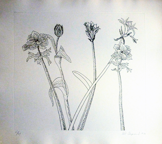 Flowers, Boxed Suite of 7 Etchings