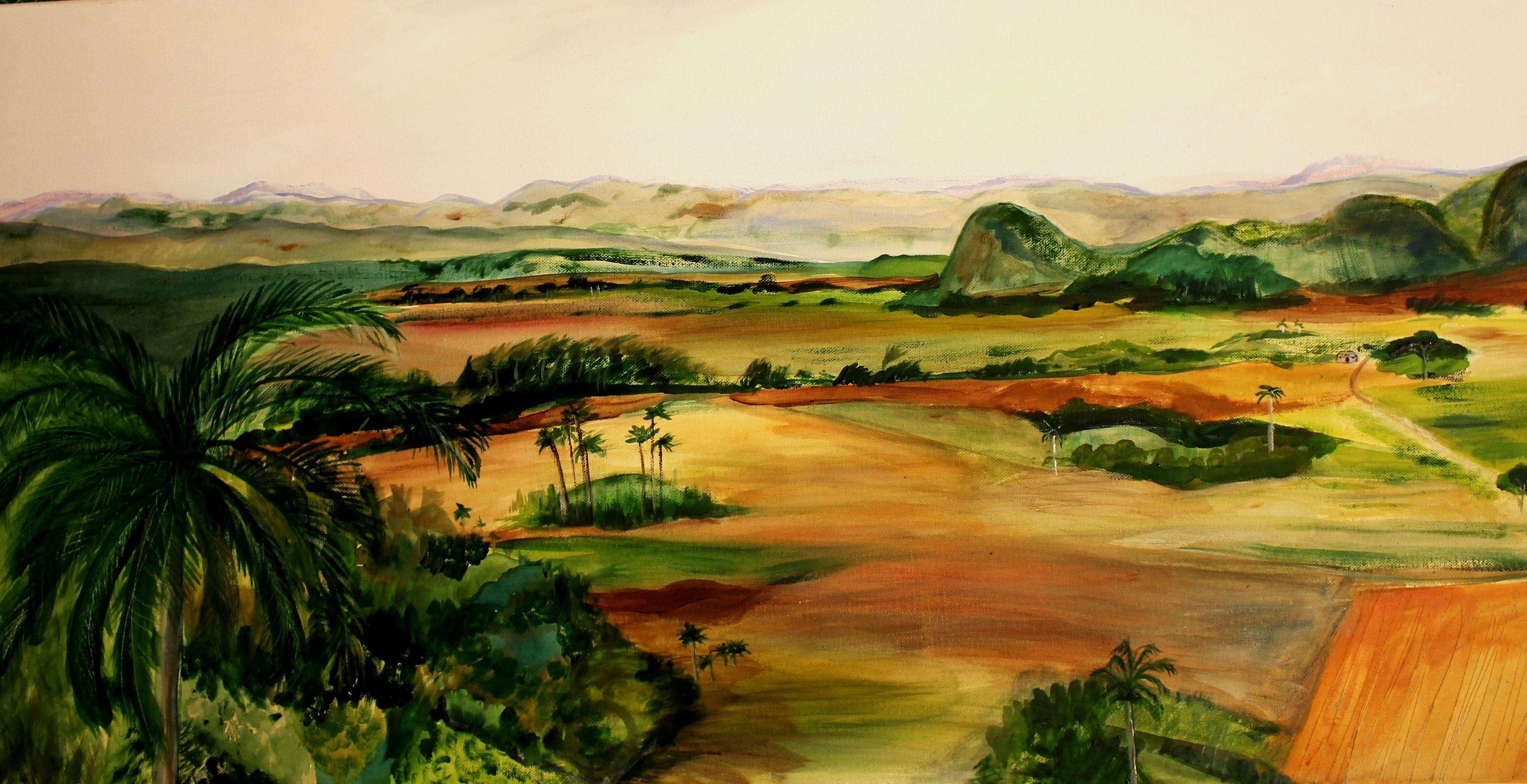 Cuban Panorama 20x40