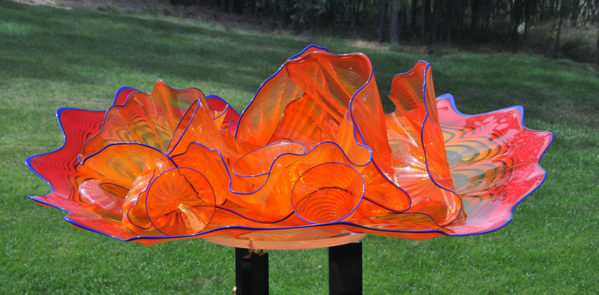 Dale chihuly art for sale dale chihuly aloadofball Gallery