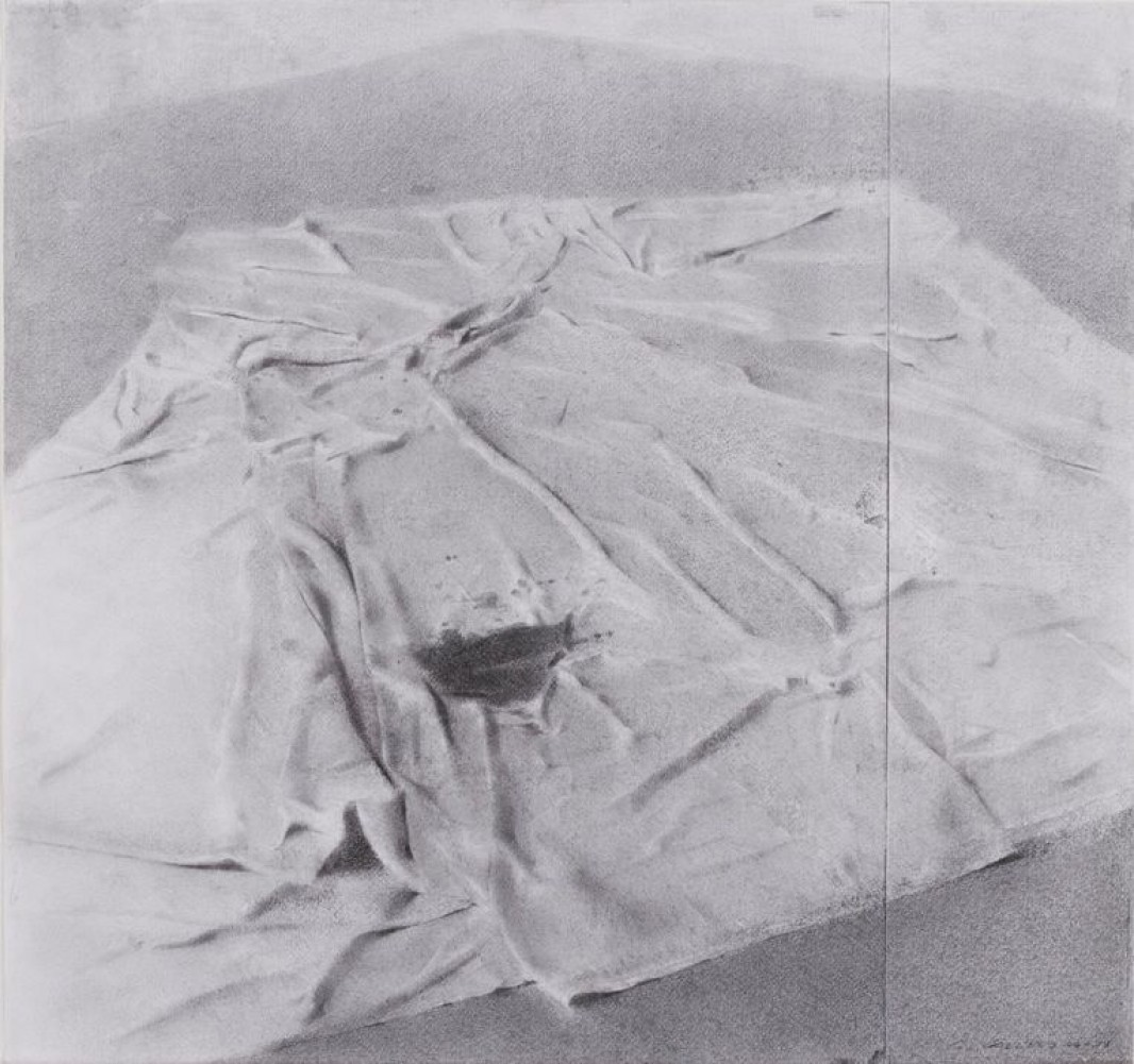 Drop Cloth, Upstate Studio Drawing 2008 22x23