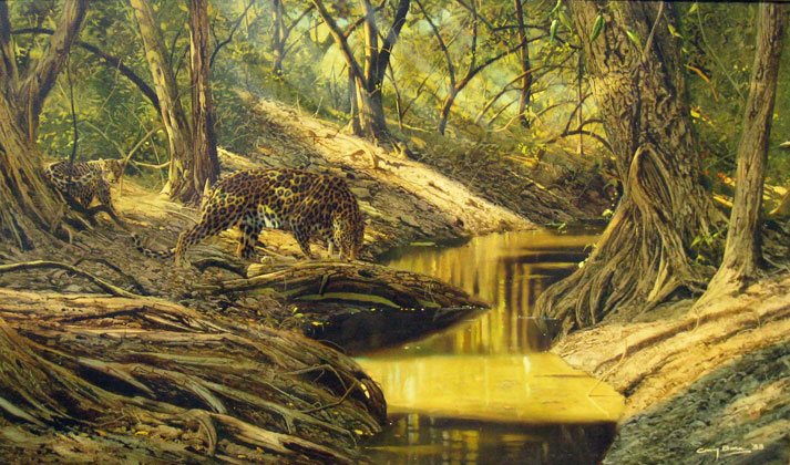 Leopards At Forest Stream