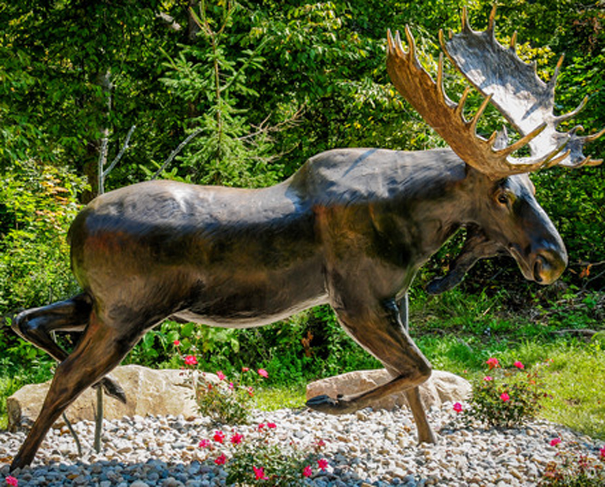 Ditch Creek Two-Step - 1/4 Life Size Moose Bronze Sculpture 2003 36 in