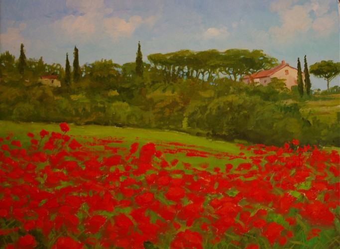 Tuscan Poppies, Italy 2010 14x18
