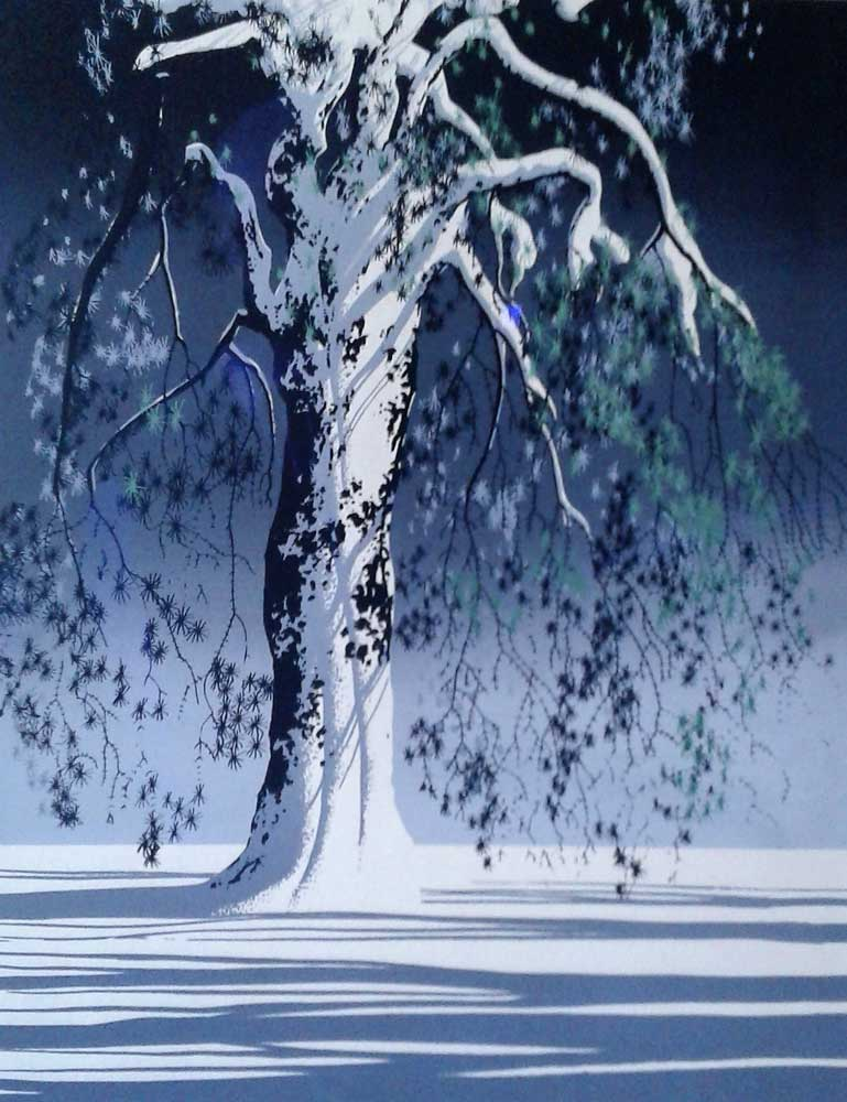Fir Tree in Snow 1976