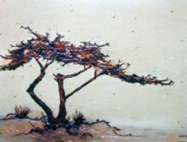 Untitled Cypress 1968 14x15 California