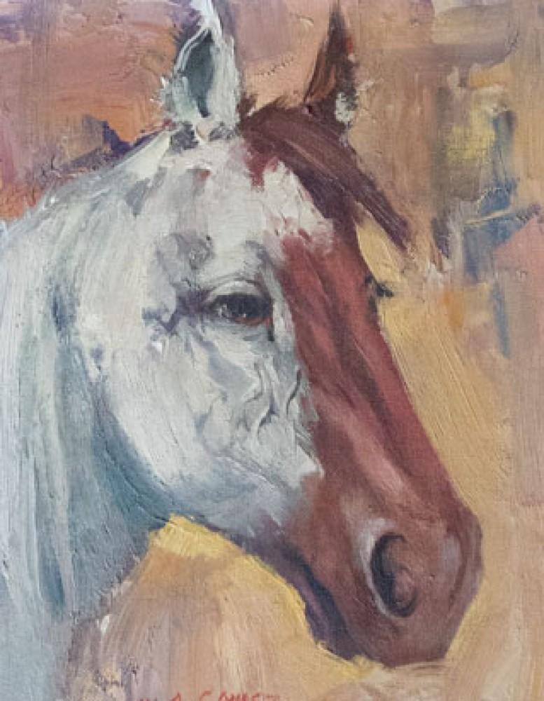 M.A. (Marco Antonio) Gomez Art for Sale