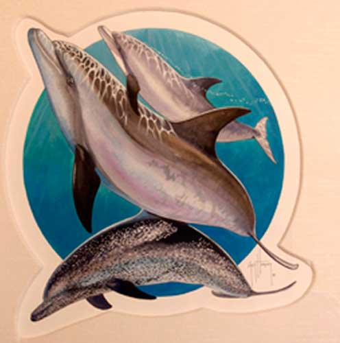 First Dolphin Piece Watercolor