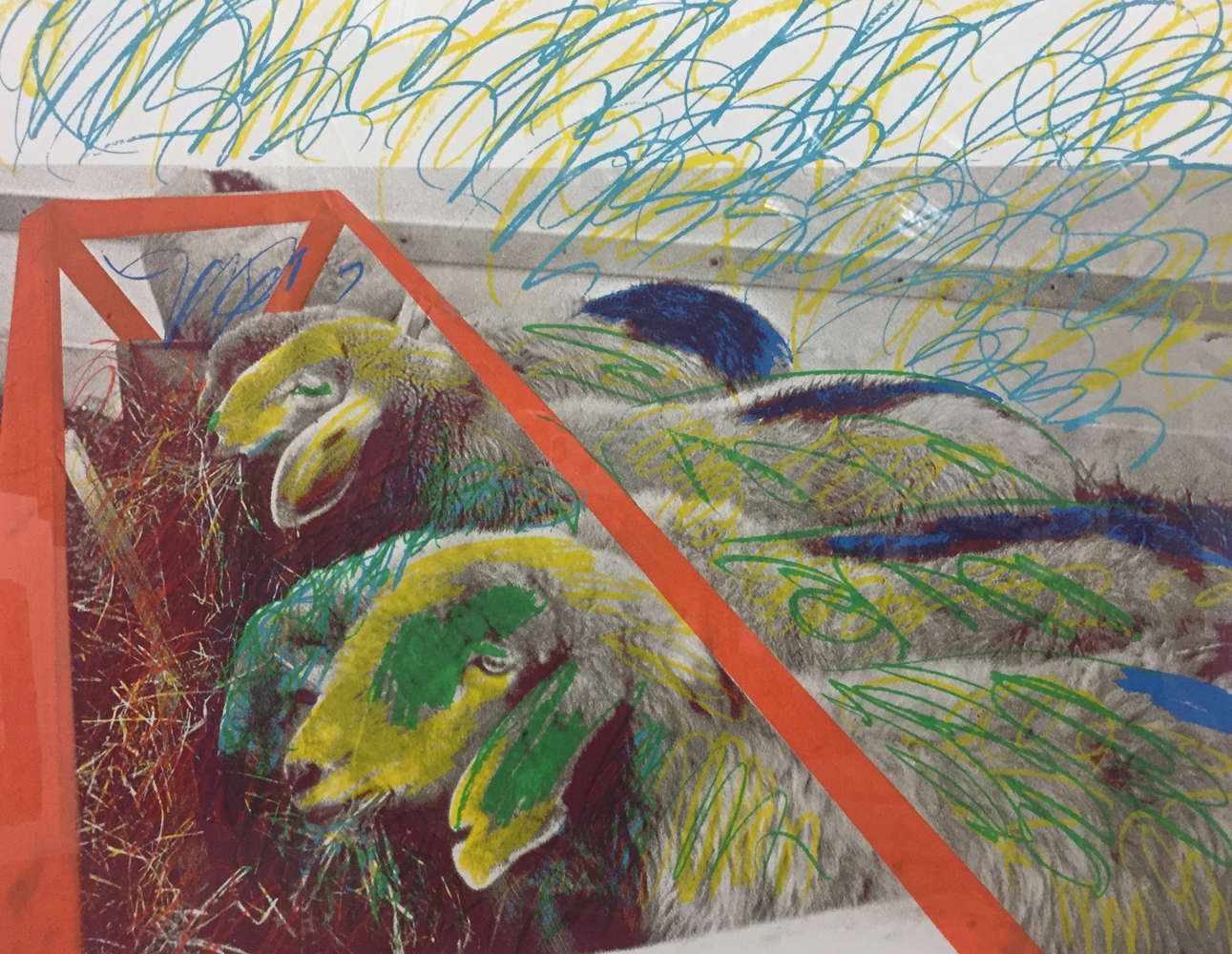 Painted Sheep 1975