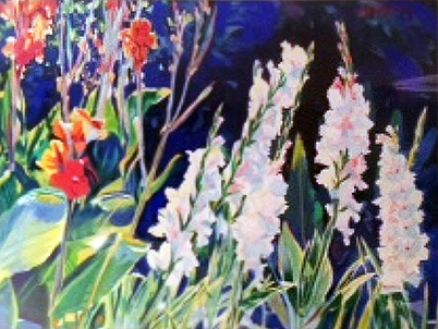 Gladiolus and Cannas 1984