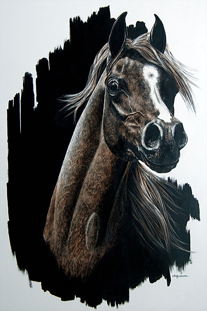 Untitled Horse 1980 20x16