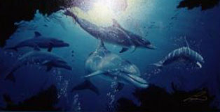 Five Dolphins 1998