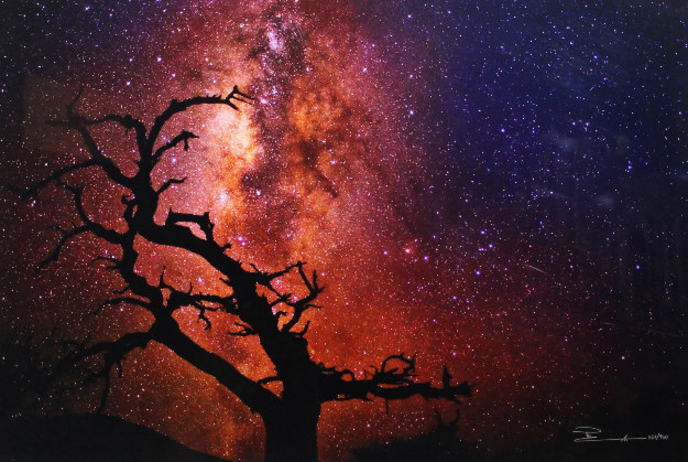 Tree of the Universe, Mauna Kea, Big Island, Hawaii