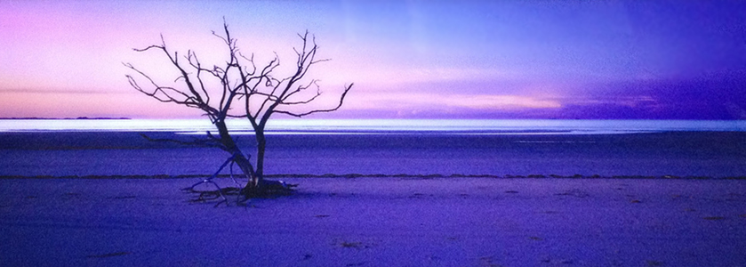 Solitude Cape  (York, Queensland)