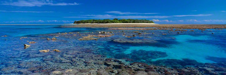 Coral Island  (small ed 100) (Lady Musgrave Island, Great Barrier Reef