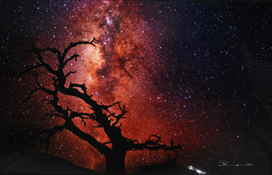 Tree of the Universe (Mauna Kea, The Big Island, Hawaii)