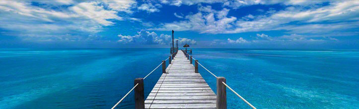 Beyond Paradise (Key West, Florida) 69x169