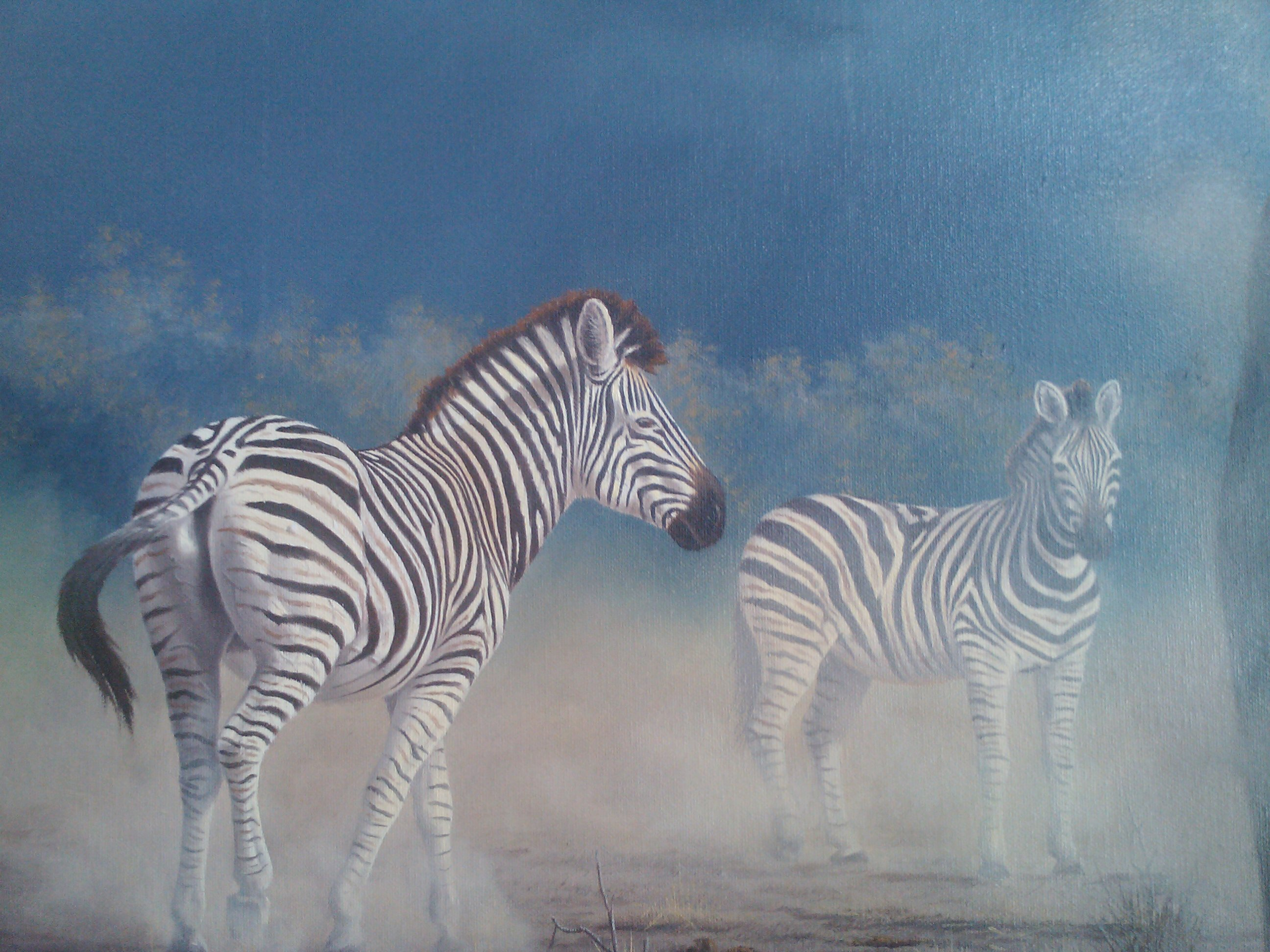Extreme Power 1997 (Zebra) 70x40