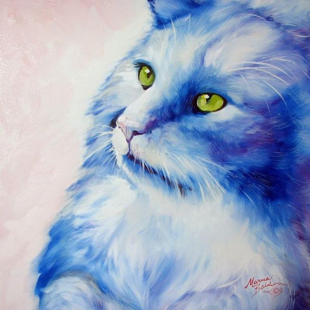 Blue Kitty Dream 2009