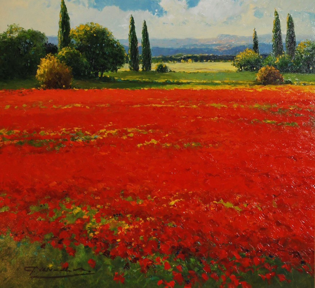 Poppy Fields and Distant Mountains 35x3'
