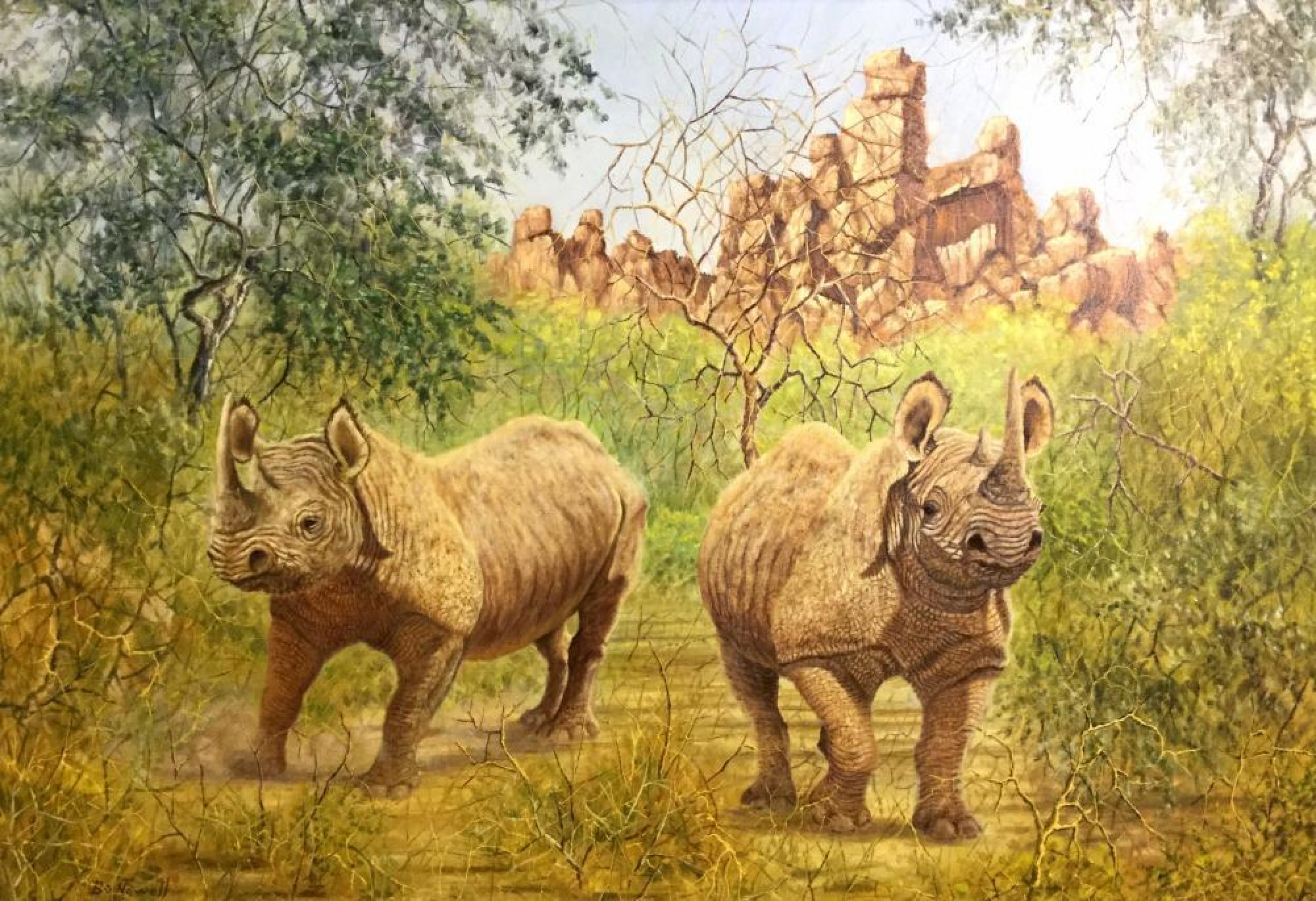 Rhinoceros Pair 2000  41x55
