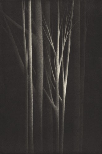Forest Nocturne IV 2001