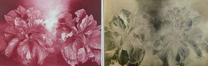 Hibiscus, and  etching plate