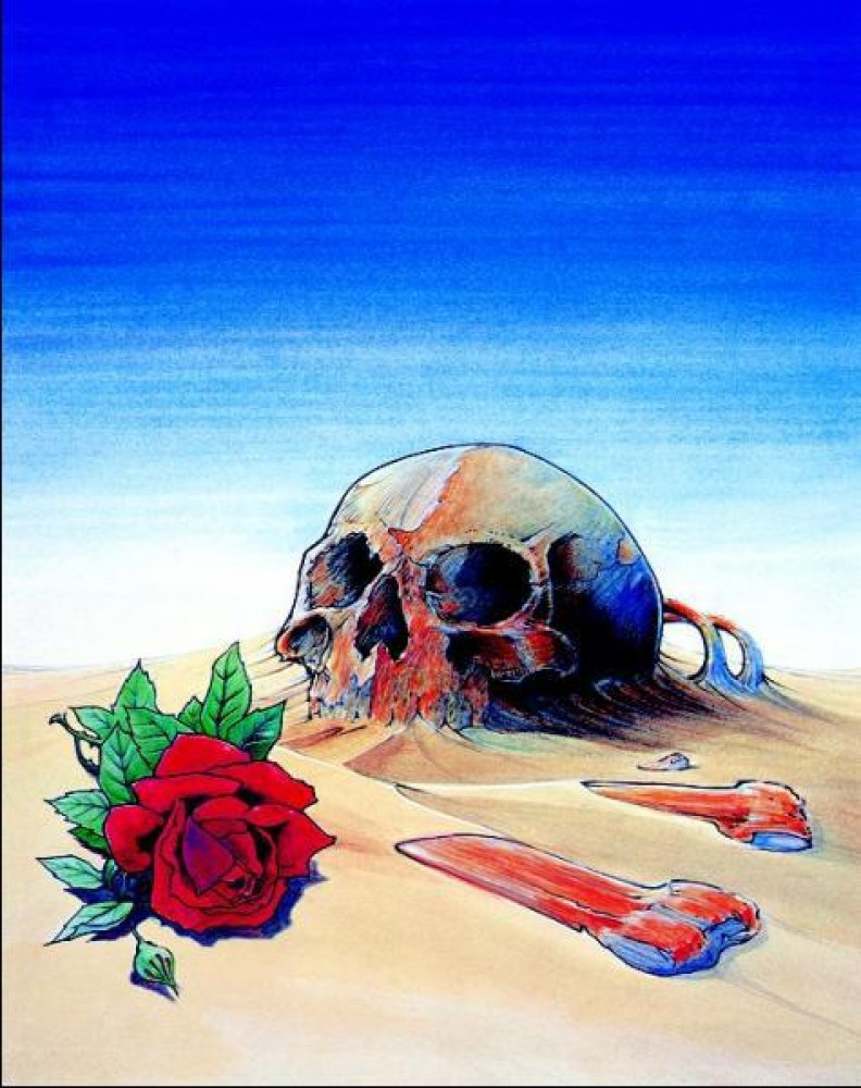 Skull And Rose in Sand 1981