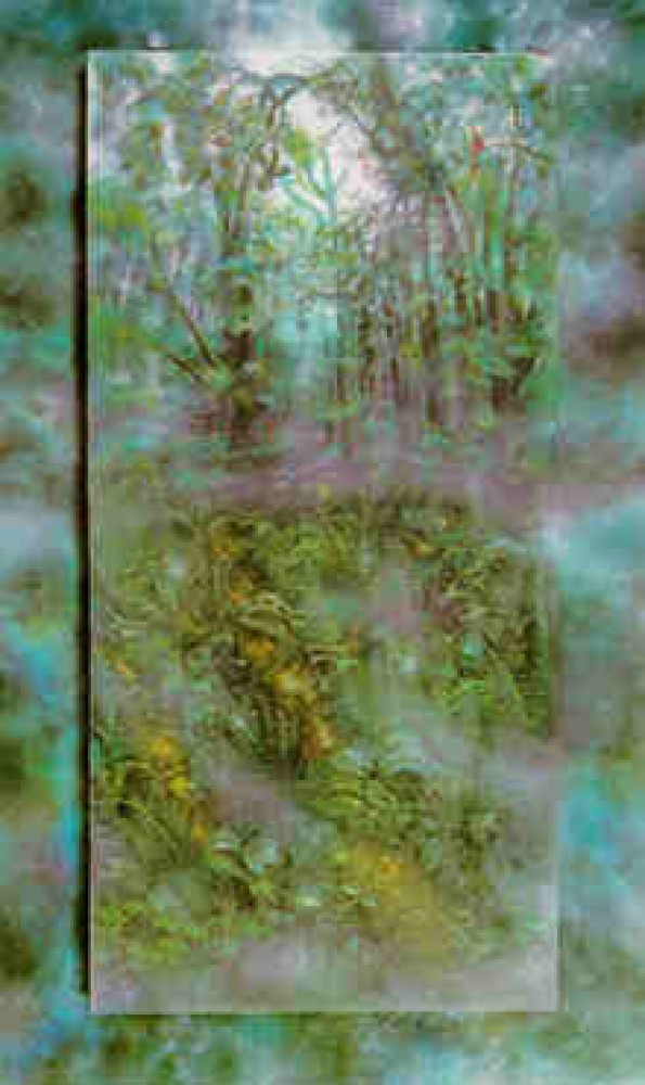 Emerald Rainforest 1990