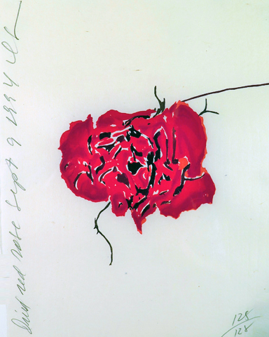 Dried Red Roses 1994