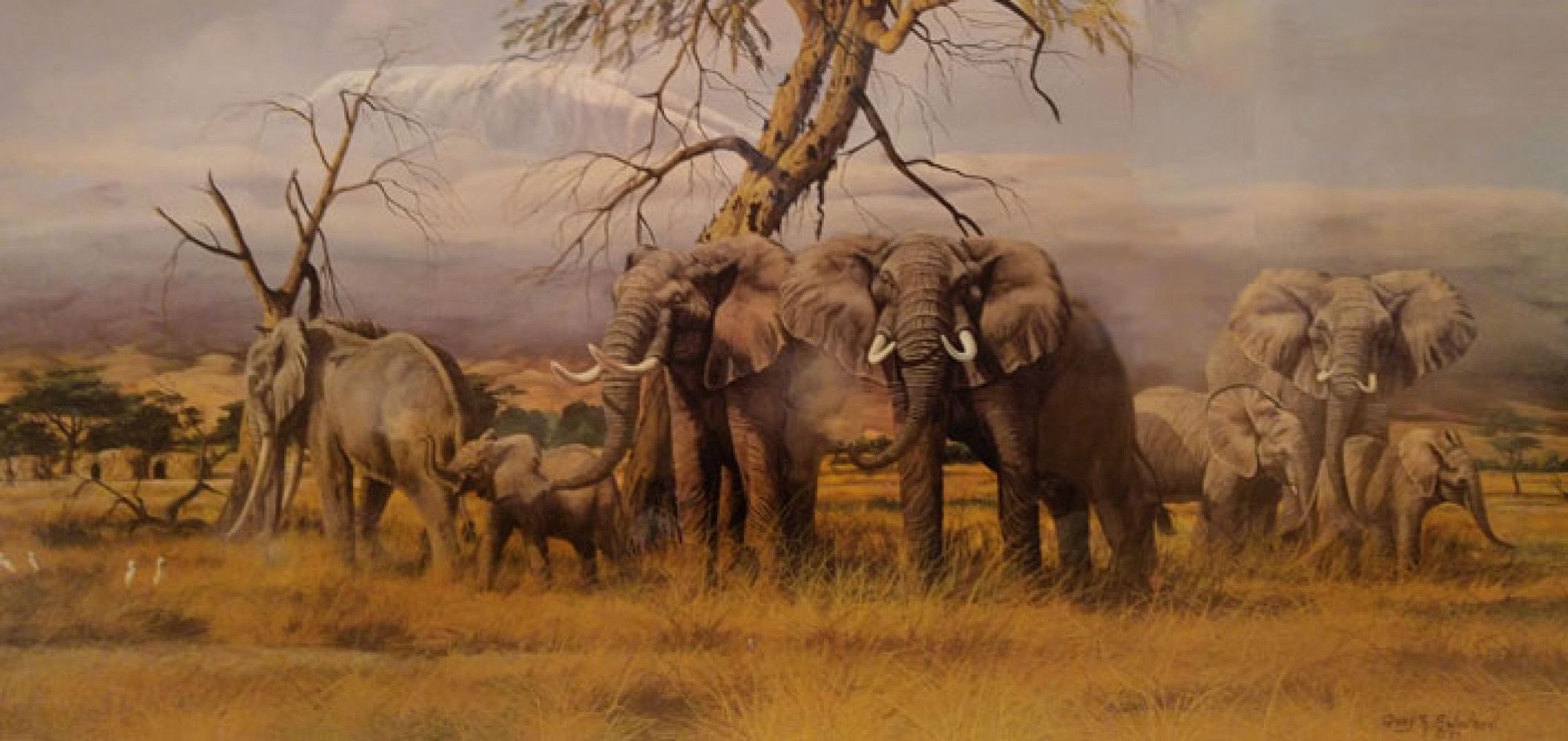 Monarchs of the Kenyan Plains 1987