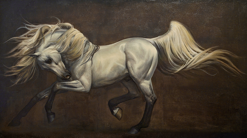 Adagio: Arabian Stallion 2014 36x60