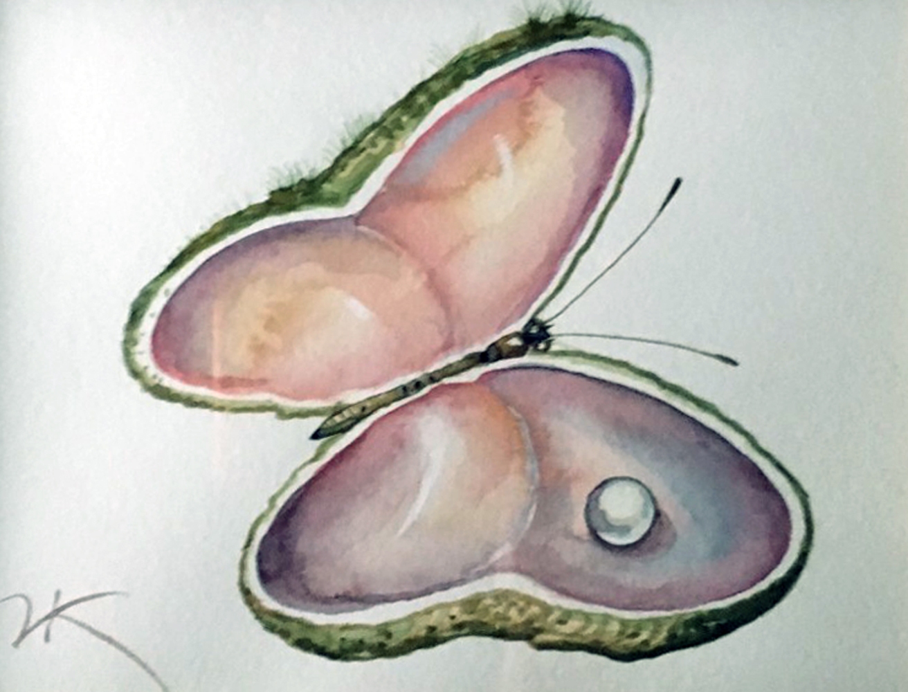 Butterfly Shell Watercolor 2010 13x13