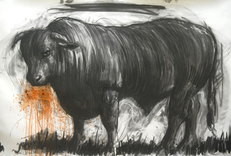 Bull Drawing 2015 39x59 by Nico Vrielink