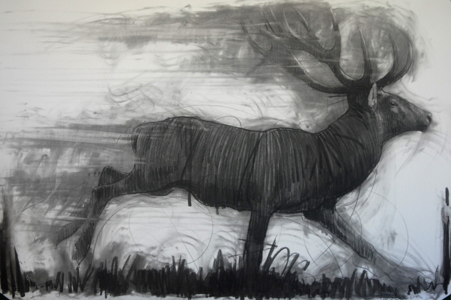 Running Deer Drawing 2015 39x59