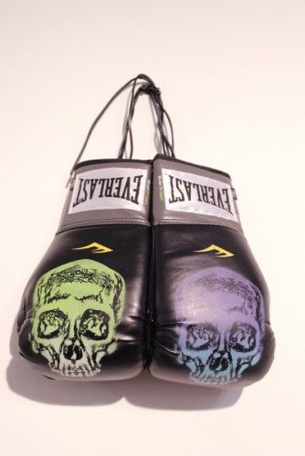 Boxing Gloves 2013