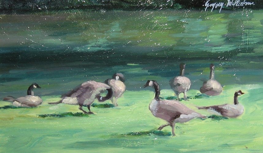 Geese in City Park 7x13