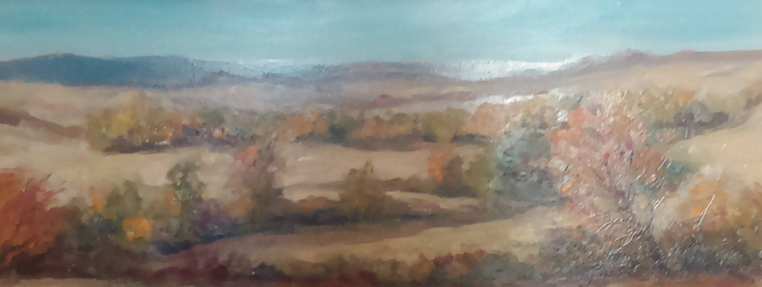 Crow Country 16x29