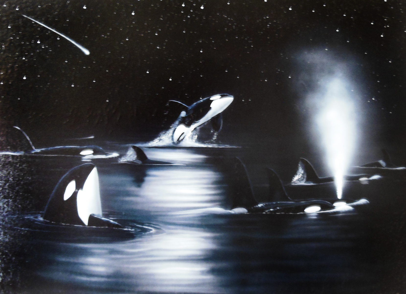Orcas Starry Night 2005