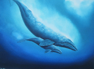 Grey Whale New Born 1985 36x48