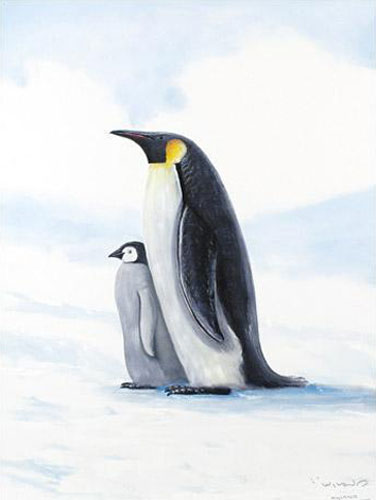 Antarctic Penguin 2005