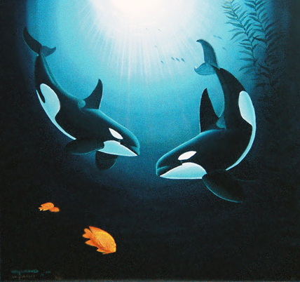 In the Company of Orcas PP