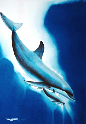 Dolphin Dreams Watercolor 1990 51x41