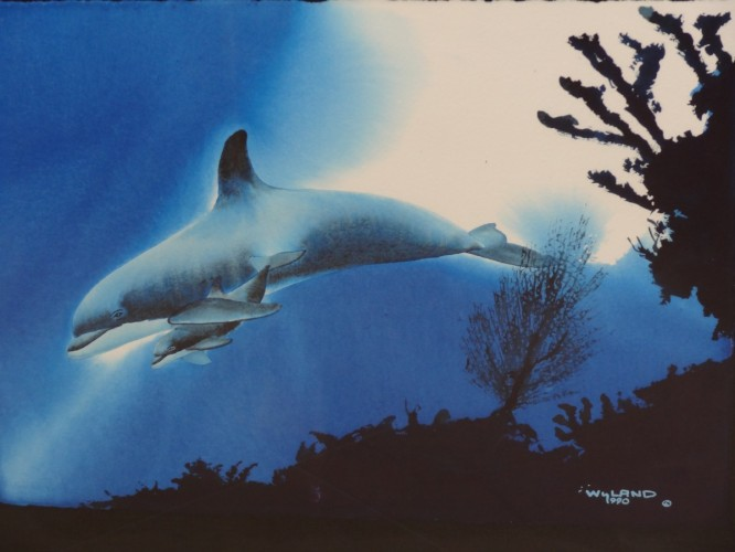 Dolphin Protection Watercolor 1990 26x32