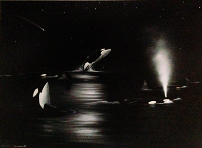 Orca Starry Night 2004