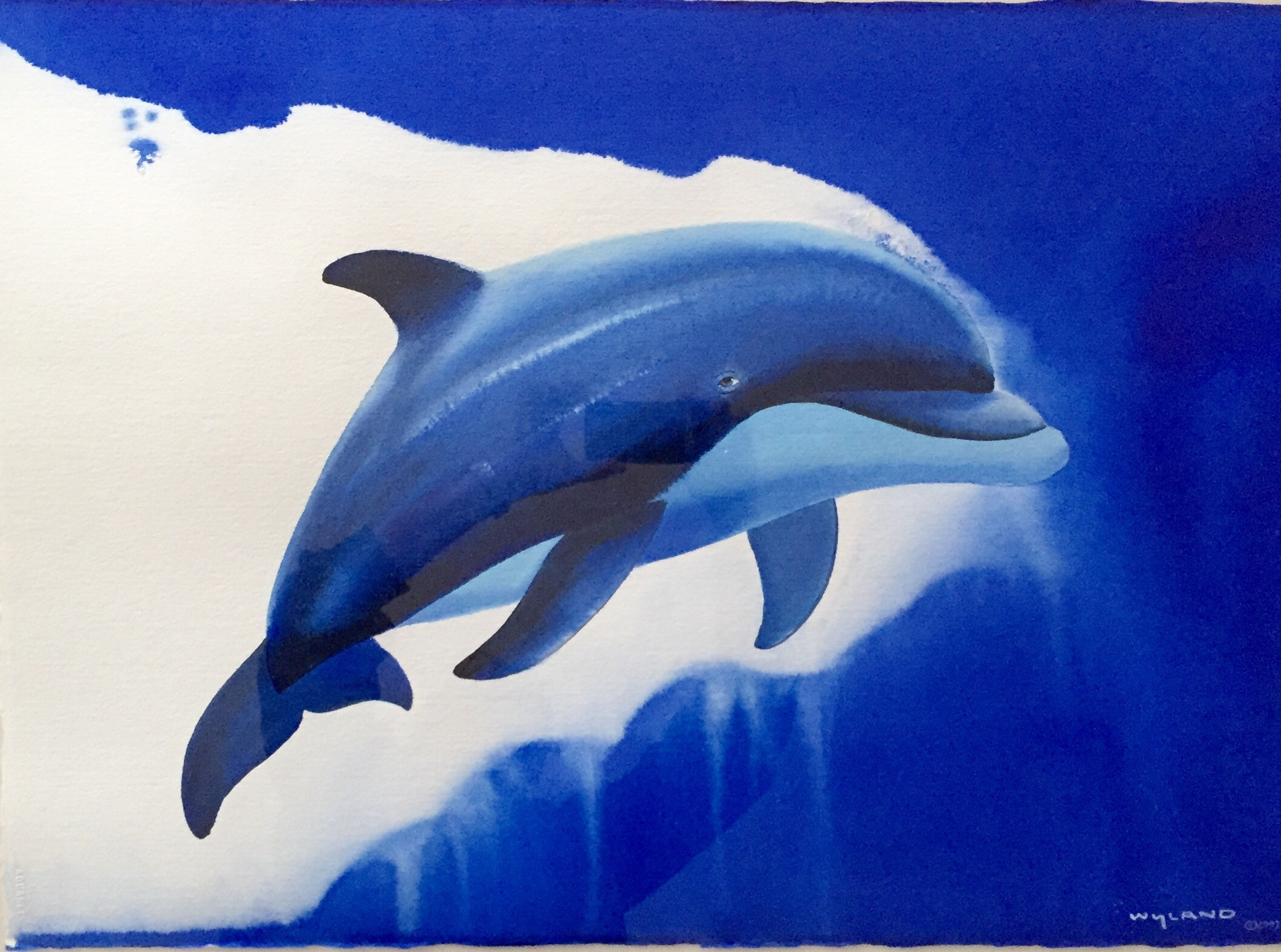 Dolphin Smile Watercolor 2003 35x45
