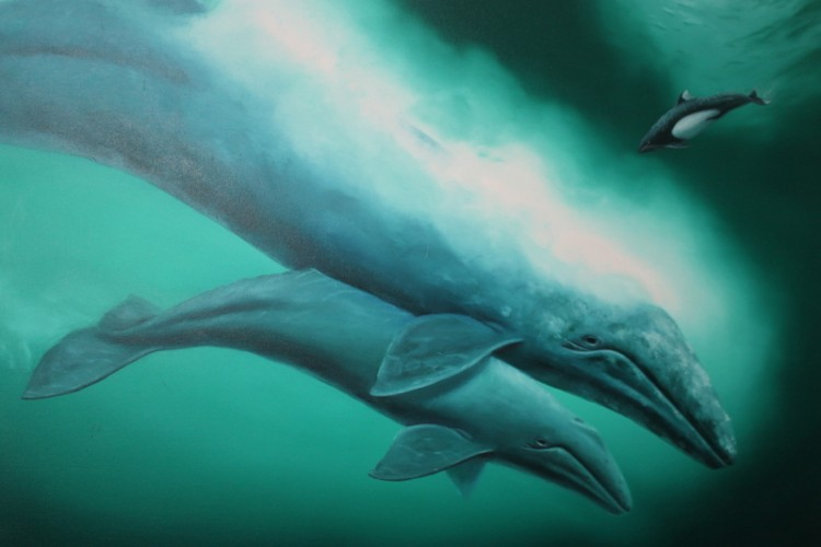 California Grey Whale and Calf 1983 29x39